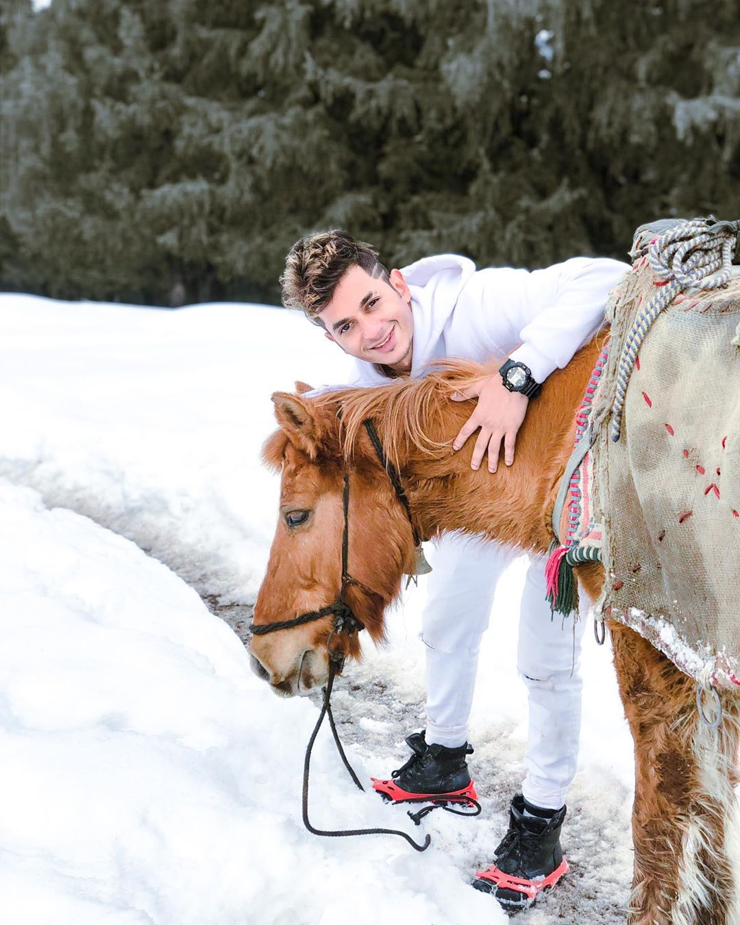 viplove master with a horse in snow